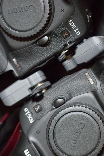 スーパーカメラマン大川さん ファシーノ EOS-1D X Mark II