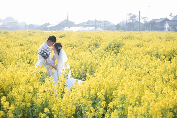結婚式前撮り 菜の花 洋装 ファシーノ スーパーカメラマン大川さん