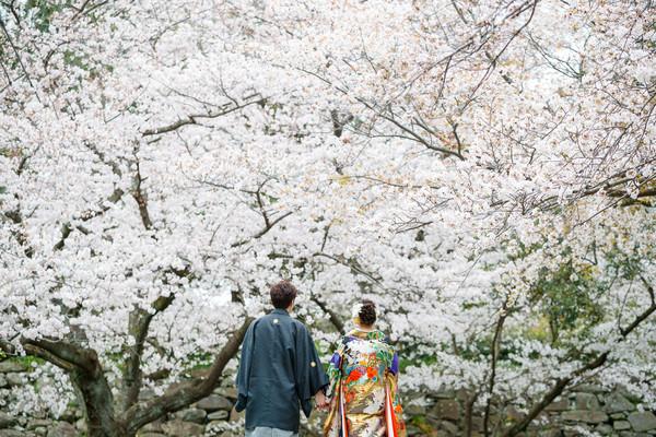 結婚式前撮り 桜の前撮り スーパーカメラマン大川さん